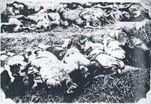 Tushu_massacred_corpses_of_japanese