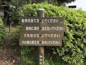 Bochinohitoc98m4buvyauromm